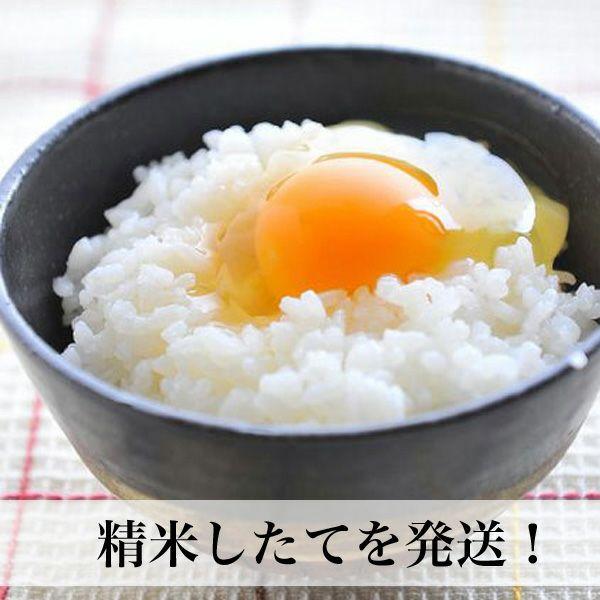 夢つくし5kg福岡産福岡県民にいちばん愛されているお米です。福岡県の宮若産の一等米【あす楽】
