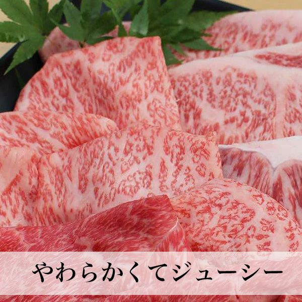 博多和牛 焼肉用ミックス 450g